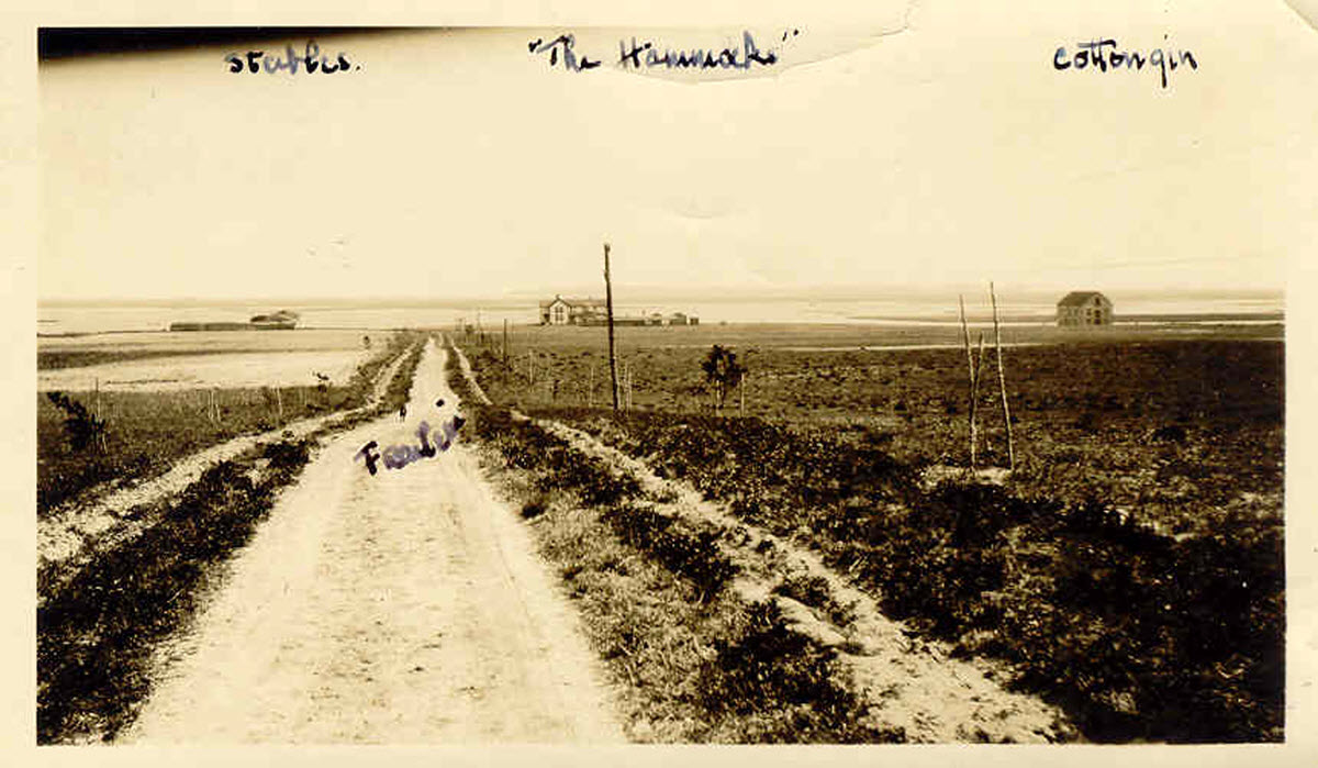 Archive photo of The Hammocks during Dr. Sharpe era
