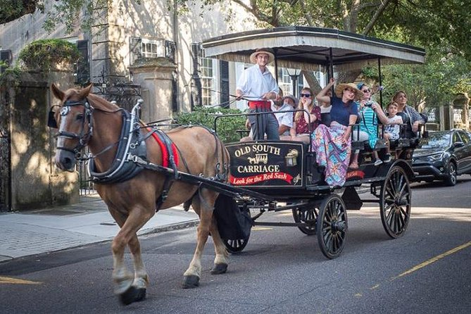 Charleston horse and carriage tour